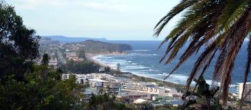 Narrabeen strand från den Collaroy platån Royaltyfria Foton