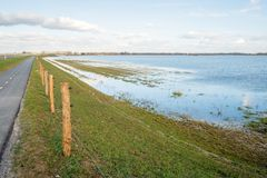 Narrow asphalt road along a flooded polder. Narrow asphalt road on an embankment along a flooded Dutch polder. Along the way is a new fence of wooden poles with Stock Photo