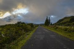 A narrow asphalt road inland on the island of Pico Royalty Free Stock Photography