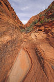 Narrow Canyon in the Desert Royalty Free Stock Photo