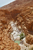 The narrow canyon and a small pool of water Stock Images