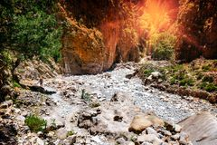 Samaria Gorge in Central Crete Stock Photography