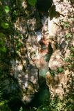 River Bussento and wwf Oasis. The narrow cave and gorges of the river Bussento resurgence, a natural reserve   in Cilento national park Royalty Free Stock Photography