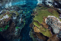 Narrow Channel in Coral Reef Stock Photography