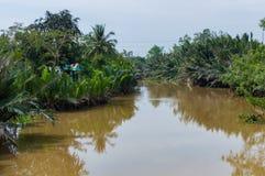Narrow channel of Mekong Delta Vietnam Stock Photos