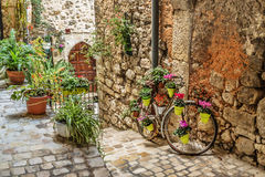 Narrow cobbled street with flowers Royalty Free Stock Photography