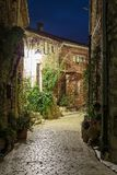 Narrow cobbled street with flowers in the old village Tourrettes-sur-Loup at night, France. stock images