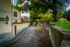 Narrow cobblestone street and wall in the Old Town, Tallinn, Est Stock Photography