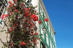 Narrow and colorful street of Lisbon Stock Photography