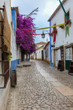 Narrow Colorful Street in the Medieval Portuguese City of Obidos Stock Image