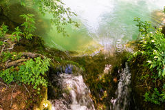 Narrow creek Royalty Free Stock Images