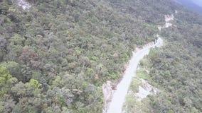 Narrow curvy asphalt road running across green forest
