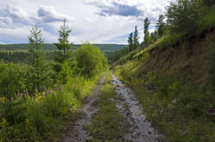 A narrow dirt road in the mountains. Royalty Free Stock Photo