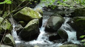Narrow fast brook