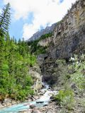 A narrow fast moving river running down through a steep valley high in the Rockies along the Berg Lake Trail. In Mount Robson Provincial Park, British Columbia stock image