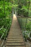 Narrow foot bridge Royalty Free Stock Photos