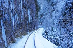 Narrow gauge. Royalty Free Stock Photography