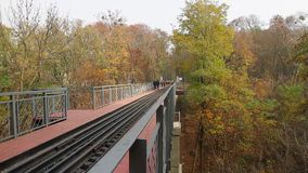 Narrow gauge bridge in the park stock video