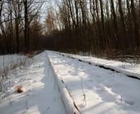 Narrow-gauge rails Stock Photo