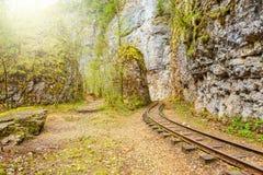 Narrow gauge railway. Stock Photos