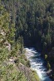 The Narrow Gauge Railway from Durango to Silverton that runs through the Rocky Mountains by the River Animas In Colorado USA.  Stock Images