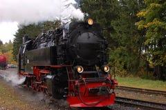 Narrow gauge railway locomotive Stock Image