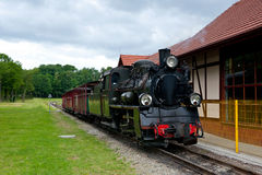 Narrow-gauge railway locomotive Royalty Free Stock Photography