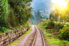 Narrow-gauge railway to Bagou in the jungle. Narrow-gauge railway from Yuejin to Bagou in the jungle. Jiayang Mining Region. Sichuan province. China Stock Photo