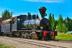 Narrow gauge steam locomotive. Royalty Free Stock Images