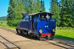 Narrow gauge steam locomotive. Stock Images