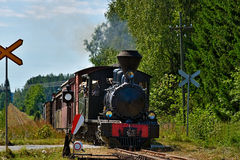 Narrow gauge steam train. Stock Photos