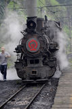 Narrow-gauge Steam Train Stock Photography