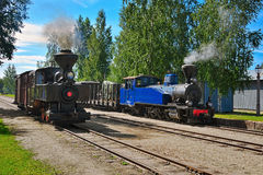 Narrow gauge steam trains. Stock Photography