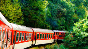 Narrow-Gauge Train. On the road with narrow-gauge train deep in the woods Stock Photos