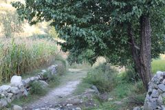 Narrow glade in the Himalayas mountains. One such narrow glade in the Himalayas mountains in he sub continent countries Royalty Free Stock Photos