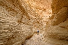 Narrow gorge in Judea desert. Royalty Free Stock Images