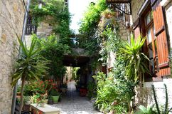 Narrow Greek Cyprus Street - Stone houses with loads of green plants royalty free stock photo