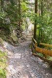 A narrow hiking path at Wolfsklamm Gorge, Austria Stock Photo