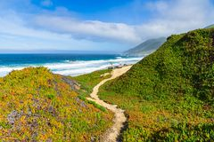 A narrow hiking trail curves through the landscape above the Pacific Ocean along the California coast stock photo