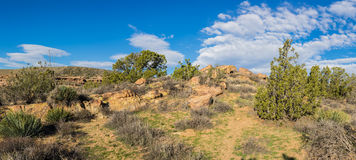 Narrow Hiking Trail in Mojave Royalty Free Stock Image