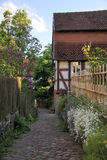 Narrow lane with garden fence Royalty Free Stock Photo