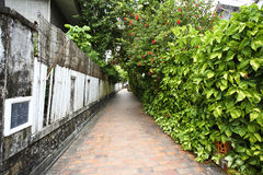 Narrow laos street in Luang Pra Bang Stock Photos