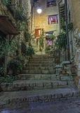 Narrow lappad gata med blommor i den gamla byn på natten, Frankrike royaltyfria bilder