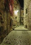 Narrow lappad gata med blommor i den gamla byn på natten, Frankrike royaltyfri fotografi