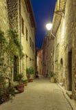 Narrow lappade gatan med blommor i den gamla byn Tourrettes arkivfoto