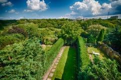 Backyard gardens of row homes. Royalty Free Stock Photo