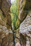 Narrow mountain river canyon in mountain gorge.  royalty free stock photo