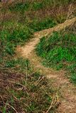 Narrow muddy road in a grass field. royalty free stock photos