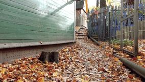 A narrow path covered with leaves leading directly between the houses