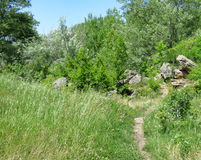 A narrow path on among the grass to the stones Royalty Free Stock Image